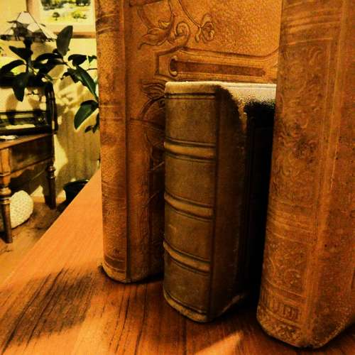 Spine Books Antiquariat Old Old Book Antiquarian