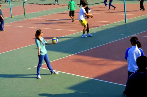 Sports People Students Volleyball Court Courts