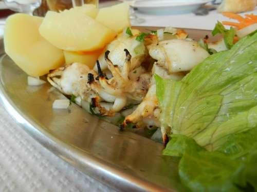 Squid Lettuce Food