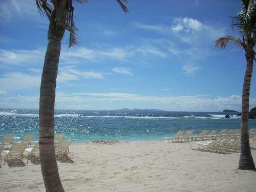 St Maarten Beach Palm Trees Ocean Lounge Chairs