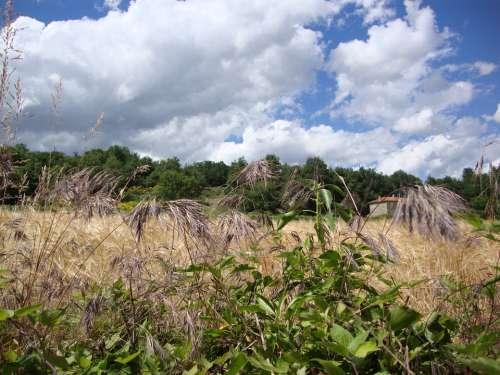St Ostian Ardèche Grass Fields Landscape