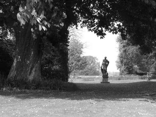 Statue Rural Tree Field Spirituality Sculpture