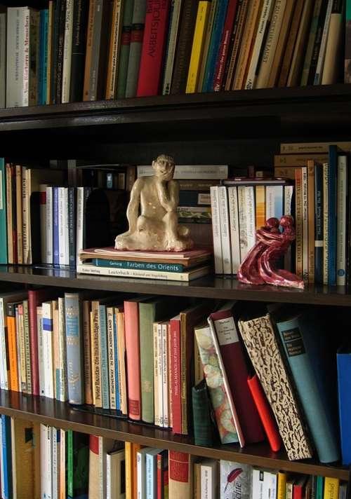 Statue Plastic Think Thinker Book Books Bookshelf