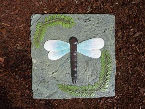Stone Tile Dragonfly Insect Nature Wings Step