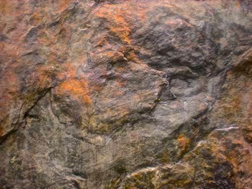 Stone Bear Head Rust Grey