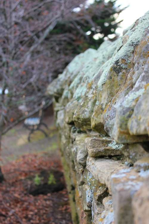 Stone Fence Old Weathered Aged Lichen Moss Garden