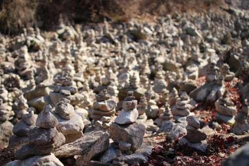 Stone Tower Stone Arboretum