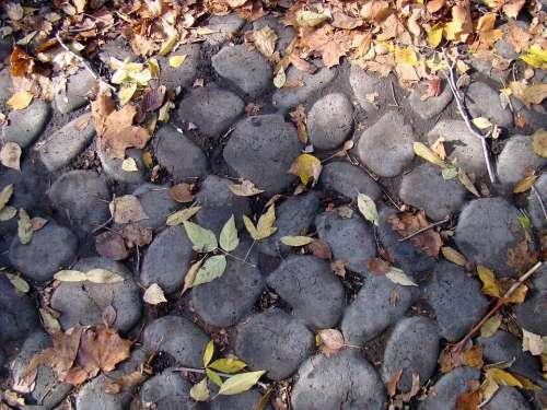 Stones Bridge Cobblestones Leaves Autumn