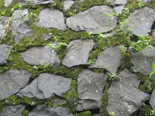 Stones Wall Moss Texture Natural Surface Pattern