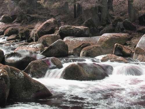 Stones River Nature Flowing Surface Czech Republic