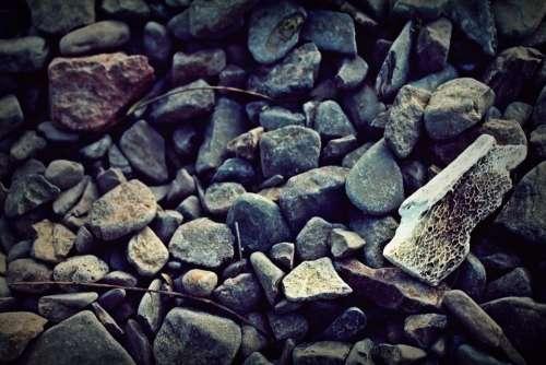 Stones Stone Rock Floor Texture Bone