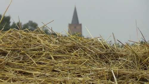 Straw Church Nature Landscape Scenic Field