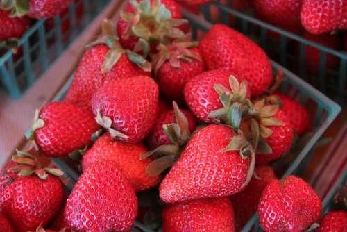 Strawberries Berries Fresh Sweet Food Fruit Red