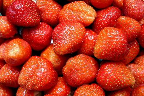 Strawberries Fruit Sweet Delicious Red Zuckrig