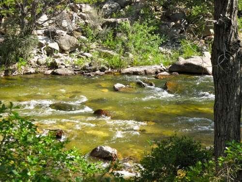 Stream Creek Flowing Landscape Nature Rock Water