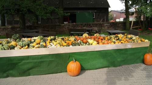 Street Vending Street Stall Vegetable Stand Autumn