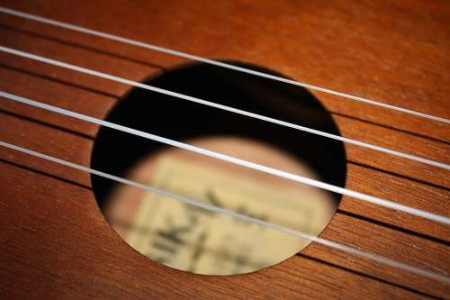 Strings Ukulele Instrument Music Acoustic Hawaiian