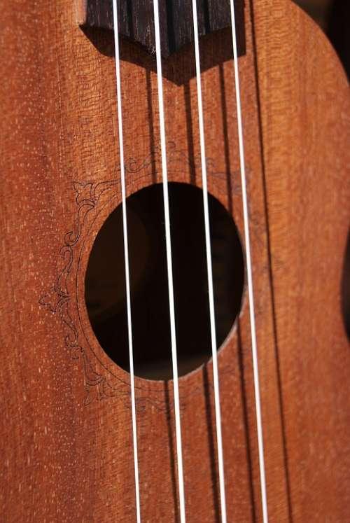 Strings Ukulele Music Hollow Wood Instrument