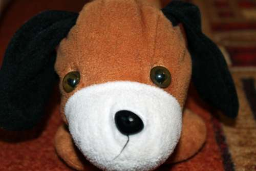 Stuffed Animal Dog Floppy Ear Niedlig