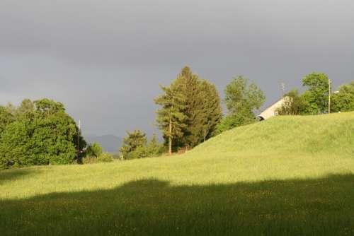 Sun Pasture Clouds
