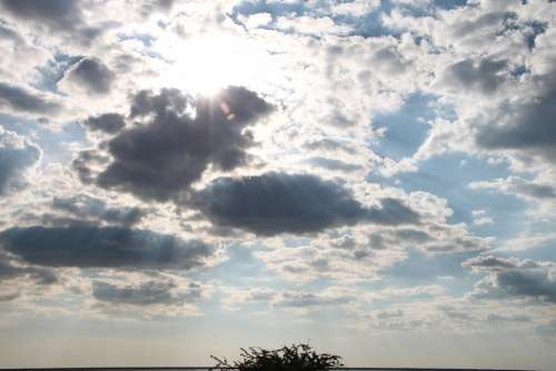 Sunlight Sun Rays Light Shine Warm Summer Hot