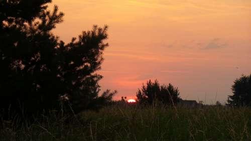 Sunrise Meadow Morning Trees Sun Red Sky