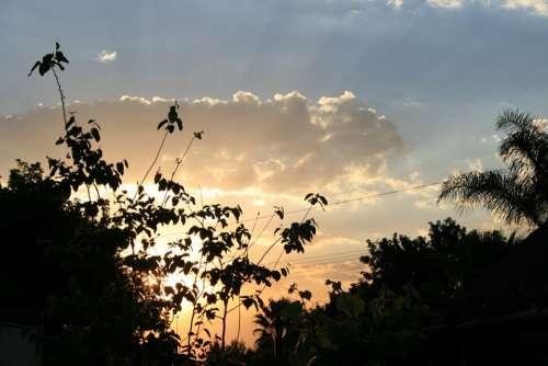 Sunset Soft Oyster-Orange Bright Light Clouds