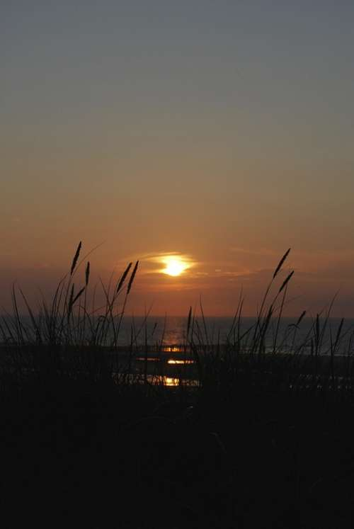 Sunset Sea Wangerooge Grasses Sky