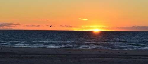 Sunset Sea Sky Ocean Beach Sun Summer Landscape
