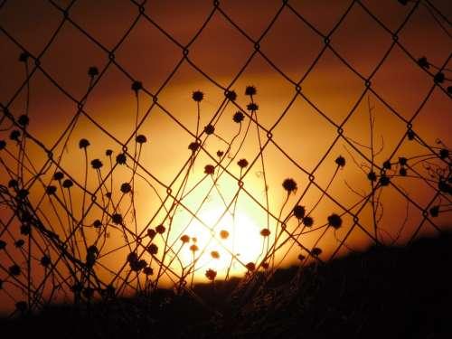 Sunset Orange Sun Fence