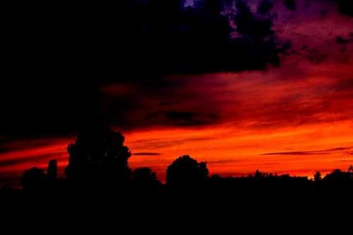 Sunset Cloud Night Storm Sky Tree