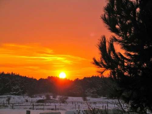 Sunset Evening Sky Nature