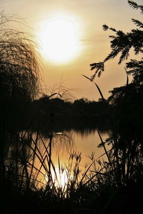 Sunset Over Pond Pond Water Sunset Sun Reflection