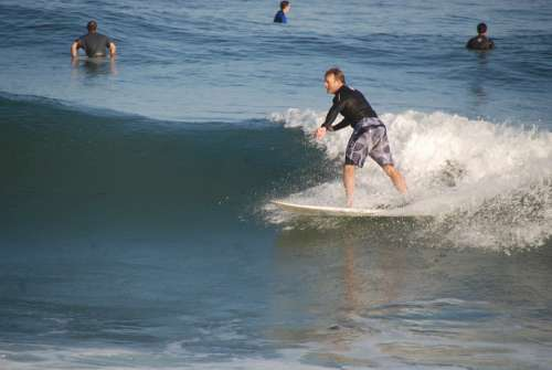 Surfer Sea Wave Sport Ocean Beach Outdoor Summer