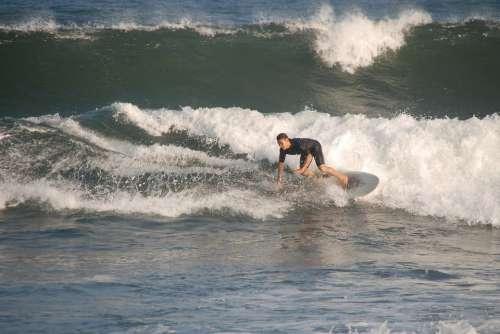 Surfer Sea Wave Sport Ocean Beach Outdoor Summer