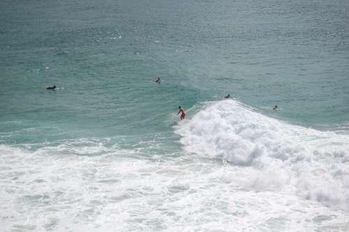 Surfer Surfing Waves Sea Ocean Water Coast Sun