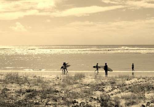 Surfers Beach Summer Sea Ocean Surfboard Surfing