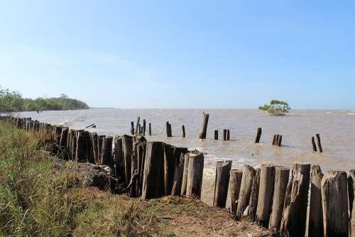 Suriname Sea Atlantic Ocean