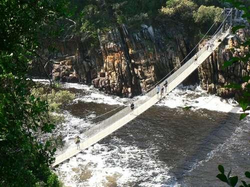 Suspension Bridge Tsitsikamma The National Park