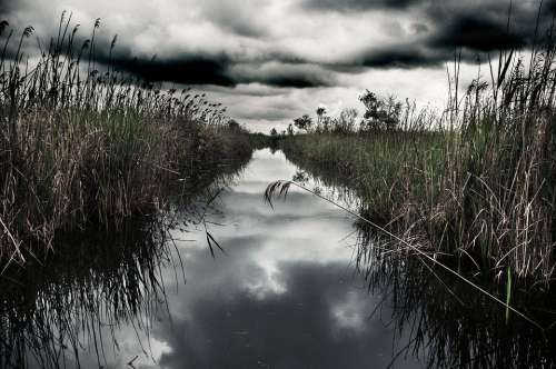 Swamp Water Clouds