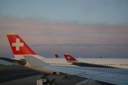 Swiss Air Plane Swiss Airplane Travel Sunset