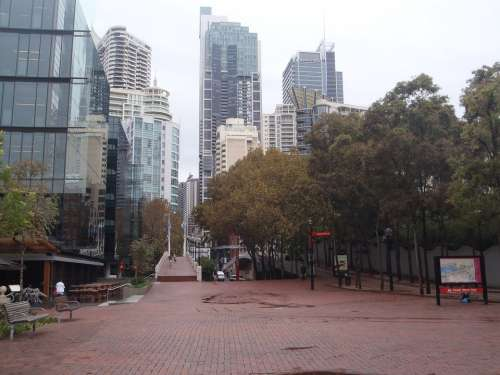 Sydney Big City Skyscrapers Metropolis Australia