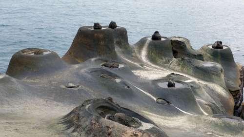 Taiwan Republic Of China Sea Water Tourism Scenery