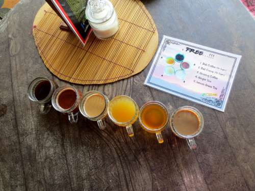 Tea Cocoa Drink Coffee Home-Grown Beverage