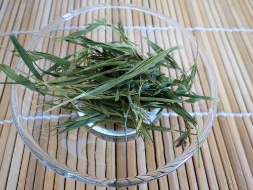 Tea Green Bamboo Plant Herbs Saucer Glass