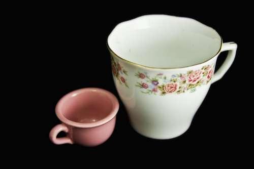 Tea Cup Cup Roses Miniature China Porcelain Pink