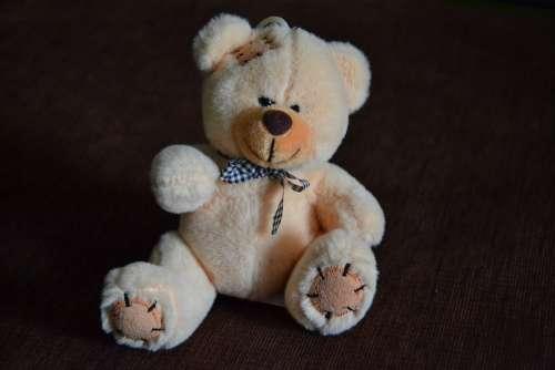 Teddy Bear Bears Misiak Plush Toy Toys