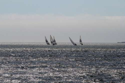 Tejo Sailboats Portugal