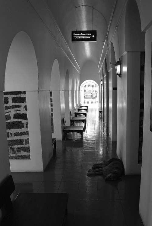 Temple Corridor Architecture Building Buddhism