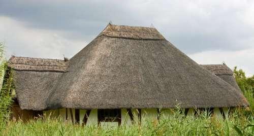 Thatched Roof Thatch Roof Thatch Thatched Roof